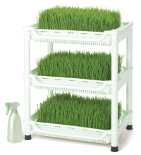 Wheatgrass-Grower-SM-350-large.jpg