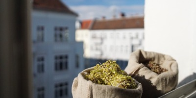 Sproutman_Sprout_Bag_In_Berlin